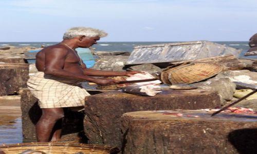 Zdjecie SRI LANKA / Sri Lanka / Suszarnia ryb / Sri Lanka, grudzień 2013