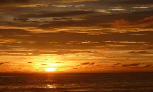 Zdjęcie SRI LANKA / Prowincja Południowa / Koggala / Landszafcik