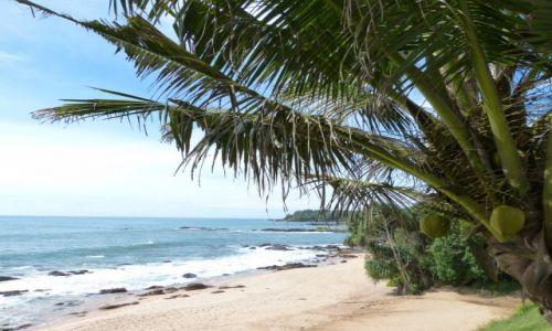 Zdjęcie SRI LANKA / Prowincja Południowa / wybrzeże / W pogodnym nastroju