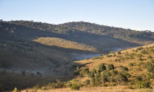 Zdjecie SRI LANKA / Równina Hortona / Park Narodowy Hortona / mgła