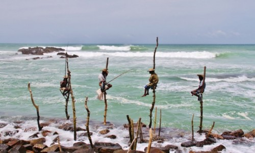 Zdjecie SRI LANKA / - / okolice Galle / Czekaj�c na ryb