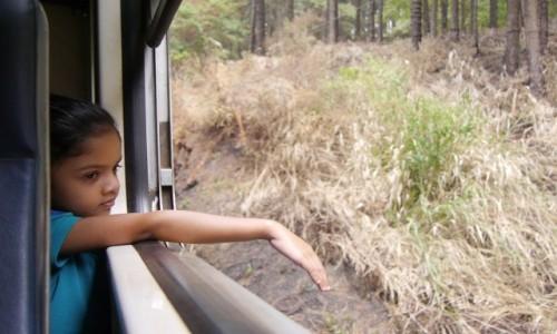 SRI LANKA / - / W drodze do Ella /  gdzie� daleko..........