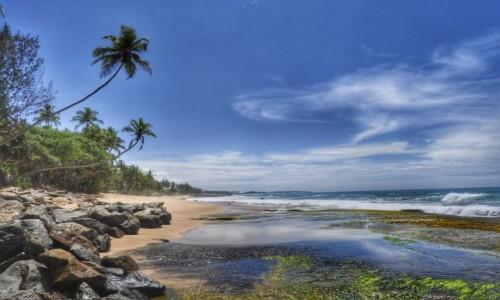 Zdjecie SRI LANKA / Tangalle / Tangalle / Rajska plaża