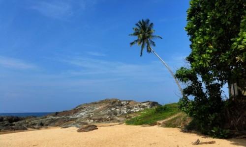 Zdjecie SRI LANKA / -Induruwa / beach / I tu zostać