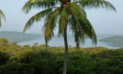 Zdjęcie SRI LANKA / Colombo / Sri Lanka / Powietrze lepkie od zapachu