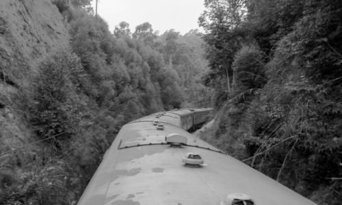 Zdjecie SRI LANKA / Kandy / gdzie w drodze / widok z dachu wagonu