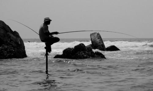 Zdjecie SRI LANKA / Mirissa / gdzies w drodze / rybak