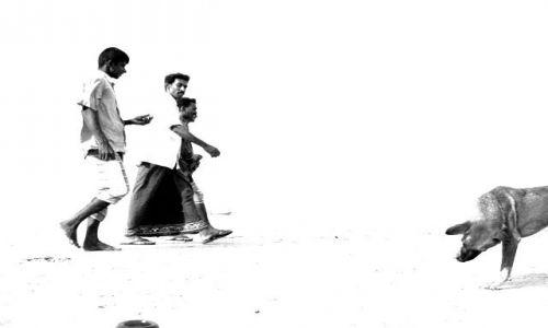 Zdjecie SRI LANKA / Wschodnie wybrzeże / Arugam Bay / plaża