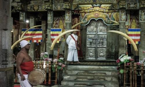 Zdjecie SRI LANKA / Centralny / Kandy / Foto-ekwilibrystyka ;-)