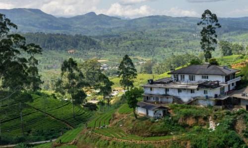 SRI LANKA / centralny / okolice Hatton / Życie na herbacie