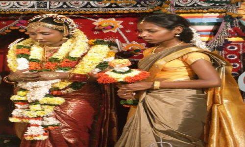 Zdjecie SRI LANKA / Colombo / Dehiwalla Tempel / Wesele hinduskie