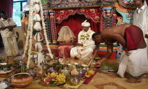 Zdjecie SRI LANKA / Colombo / Dehiwalla Tempel / Wesele hinduski