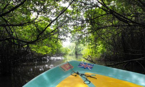 Zdjęcie SRI LANKA / Bentota / rzeka Bentota / na rzece Bentota