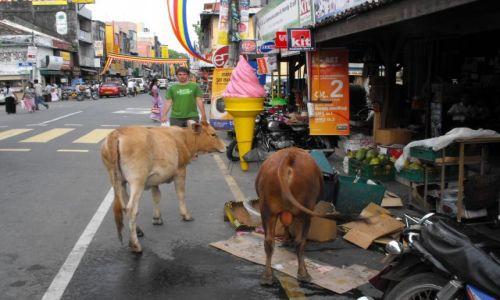 Zdjecie SRI LANKA / Galle  / centrum miasta / typowa scenka