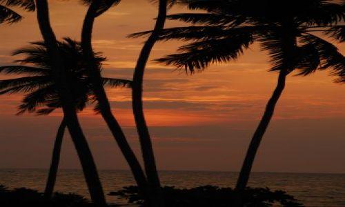 Zdjecie SRI LANKA / Okolice Galle / Okolice Galle / W promieniach zachodzącego słońca