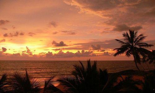 Zdjecie SRI LANKA / Induruwa / Induruwa / Ocean Indyjski