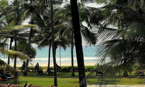 Zdjecie SRI LANKA / Bentota p�d.wyspy / widok z mojego okna w hotelu / widok z okna