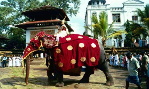 SRI LANKA / brak / Sri Lanka  / Kandy / Parada z okazji pełni księżyca