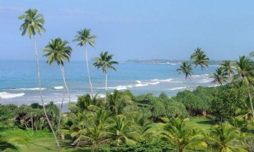 Zdjęcie SRI LANKA / Bentota / Bentota Beach / listopad na Sri Lance