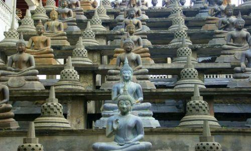 Zdjęcie SRI LANKA / Colombo / Colombo / Ściana