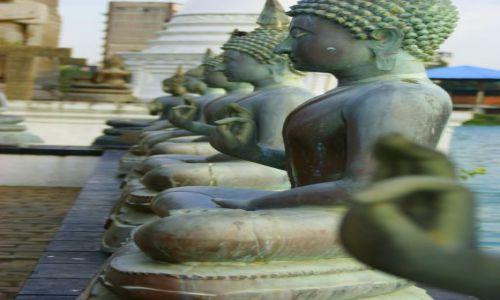 Zdjęcie SRI LANKA / Colombo / Colombo / ok