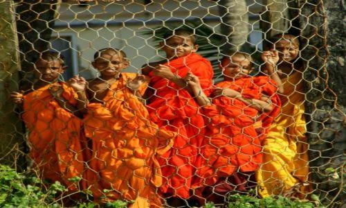 Zdjęcie SRI LANKA / Galle / Galle / Za siatką