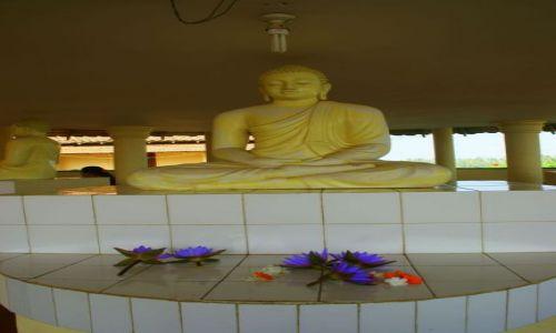 SRI LANKA / Galle / Galle / Kwiatek
