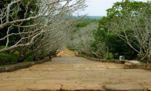 SRI LANKA / Anuradhapura / Anuradhapura / Schody