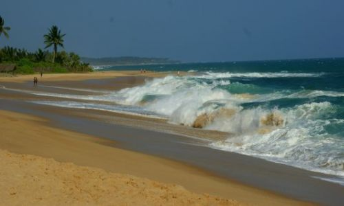 Zdjecie SRI LANKA / Tangale / Tangale / Plaża