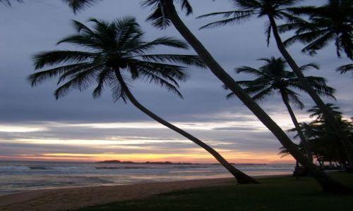 Zdjęcie SRI LANKA / pd. wybrzeże / Hikkaduwa / jutro też będzie dzień...