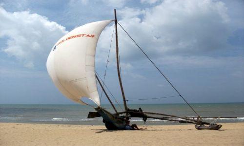 Zdjęcie SRI LANKA / Negombo / Negombo / ... ciągle pod żaglami ...