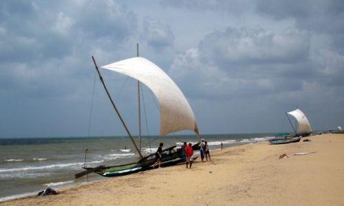 Zdjęcie SRI LANKA / Negombo / Negombo / ... na brzegu ...