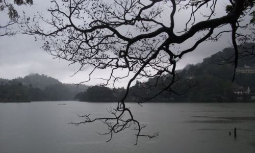 Zdjecie SRI LANKA / Kandy / Kandy / ... jezioro ... spojrzenie przez ...