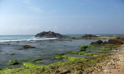 Zdjecie SRI LANKA / ... południowa część wyspy ... / ... gdzieś pomiędzy Galle a Matarą... / ... rafa, tuż przy ....