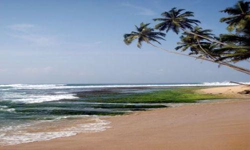 Zdjecie SRI LANKA / ... południowa część wyspy ... / ... gdzieś pomiędzy Galle a Matarą... / ... kolory ...