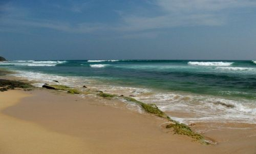 SRI LANKA / ... południowa część wyspy ... / ... gdzieś pomiędzy Galle a Matarą... / ... linia oporu ...