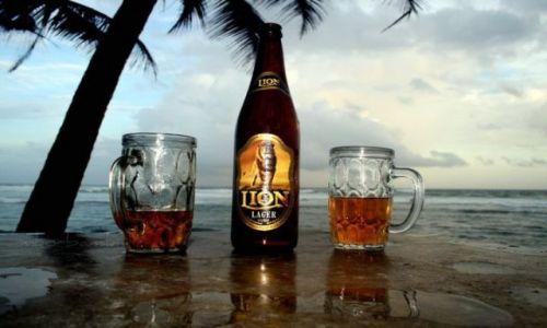 SRI LANKA / - / Madiha Beach / Lion Beer
