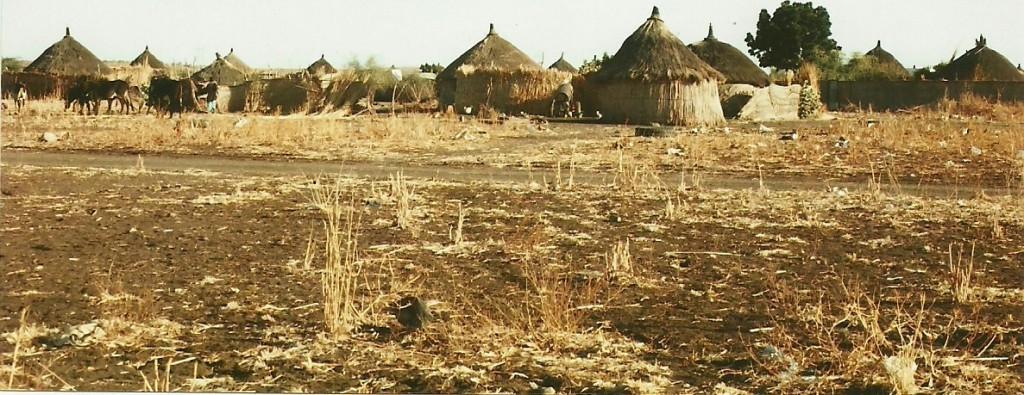 Zdjęcia: Gedaref, Kassala, Wioska, SUDAN