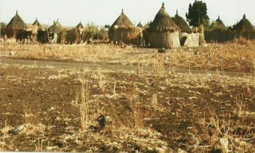 Zdjecie SUDAN / Kassala / Gedaref / Wioska