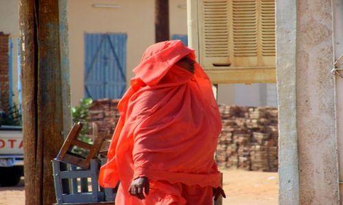 Zdjęcie SUDAN / Dongala / Dongala / Zapakowana