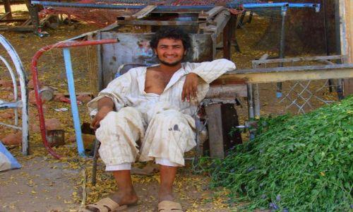 Zdjęcie SUDAN / Dongala / Dongala / Sprzedawca trawy
