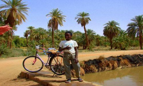 Zdjęcie SUDAN / Dongala / Dongala / Pytam dokąd