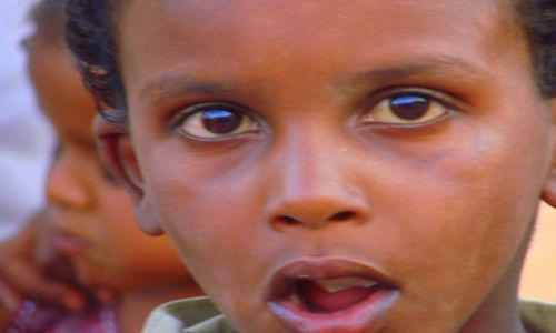Zdjęcie SUDAN / Dankala / Dankala / O