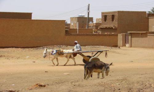 Zdjęcie SUDAN / Karma / Karma / Transport