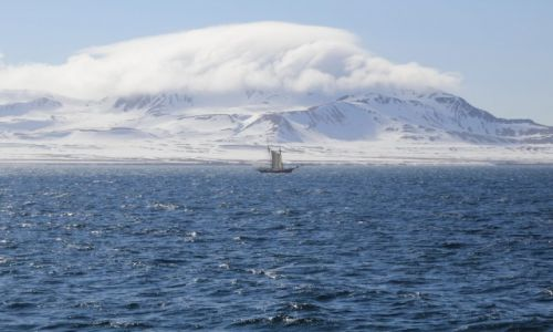 Zdjęcie SVALBARD / Spitsbergen / Isfjorden / Polarne żagle