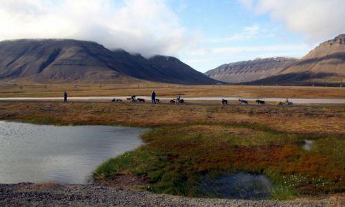Zdjęcie SVALBARD / Spitsbergen / Adventdalen / Adventdalen