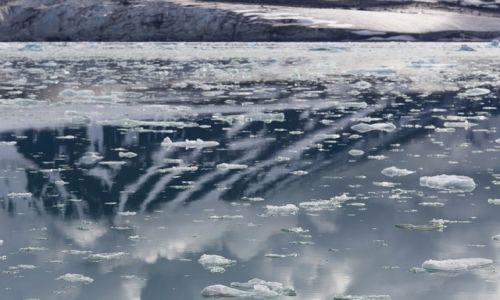 Zdjecie SVALBARD / Svalbard / Morze Barentsa / Pak lodowy