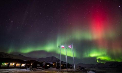 Zdjecie SVALBARD / Svalbard / Hornsund / Aurora Borealis