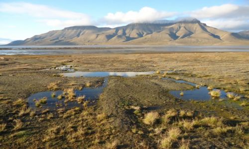 Zdjecie SVALBARD / Spitsbergen / Okolice Longyearbyen / Adventdalen