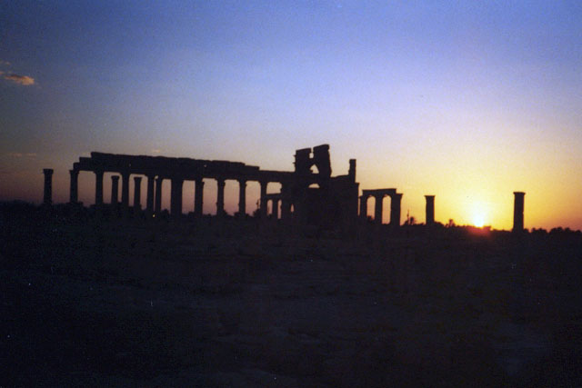 Zdj�cia: Palmyra, Palmyra - ruiny, SYRIA